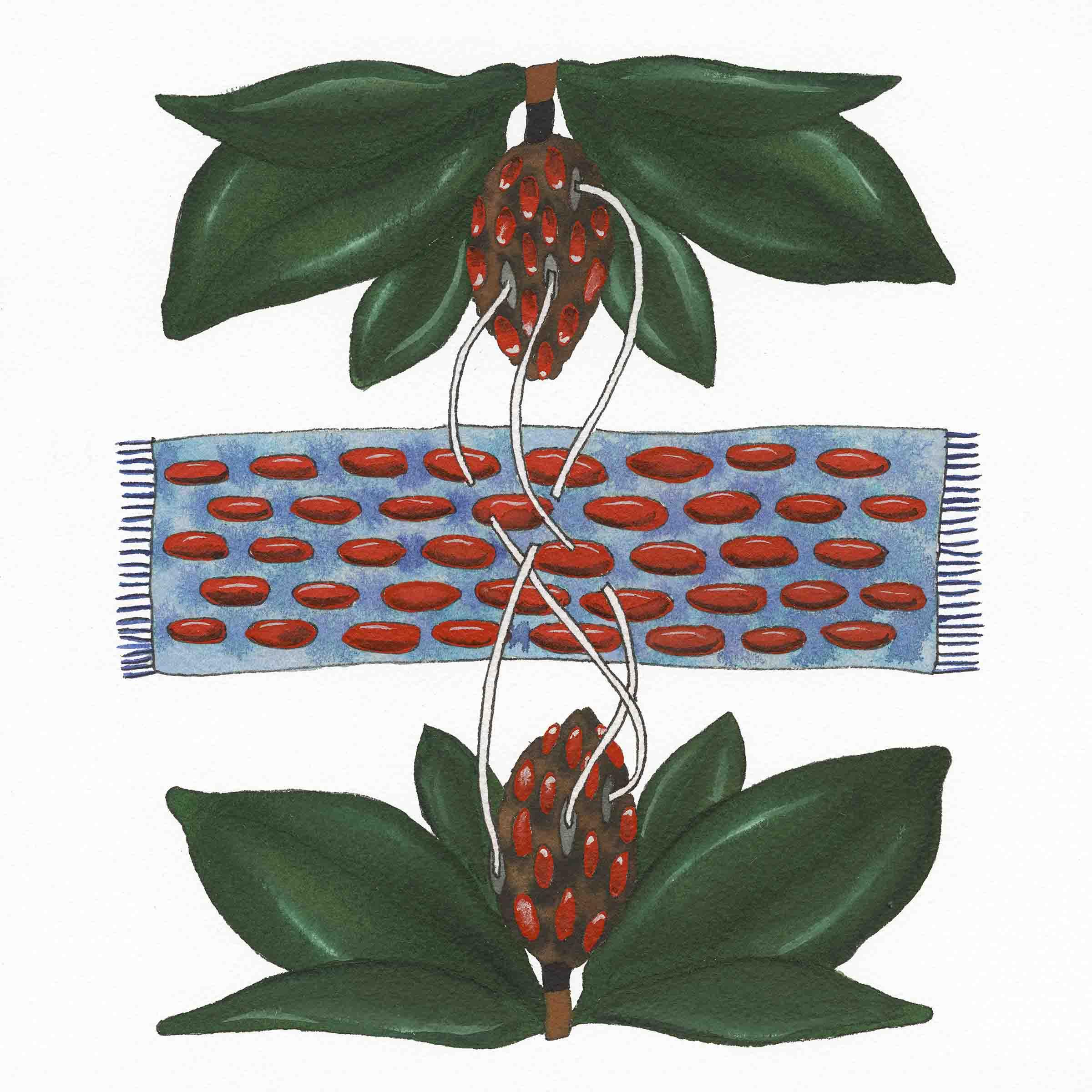 Seed Weaving 1.jpg