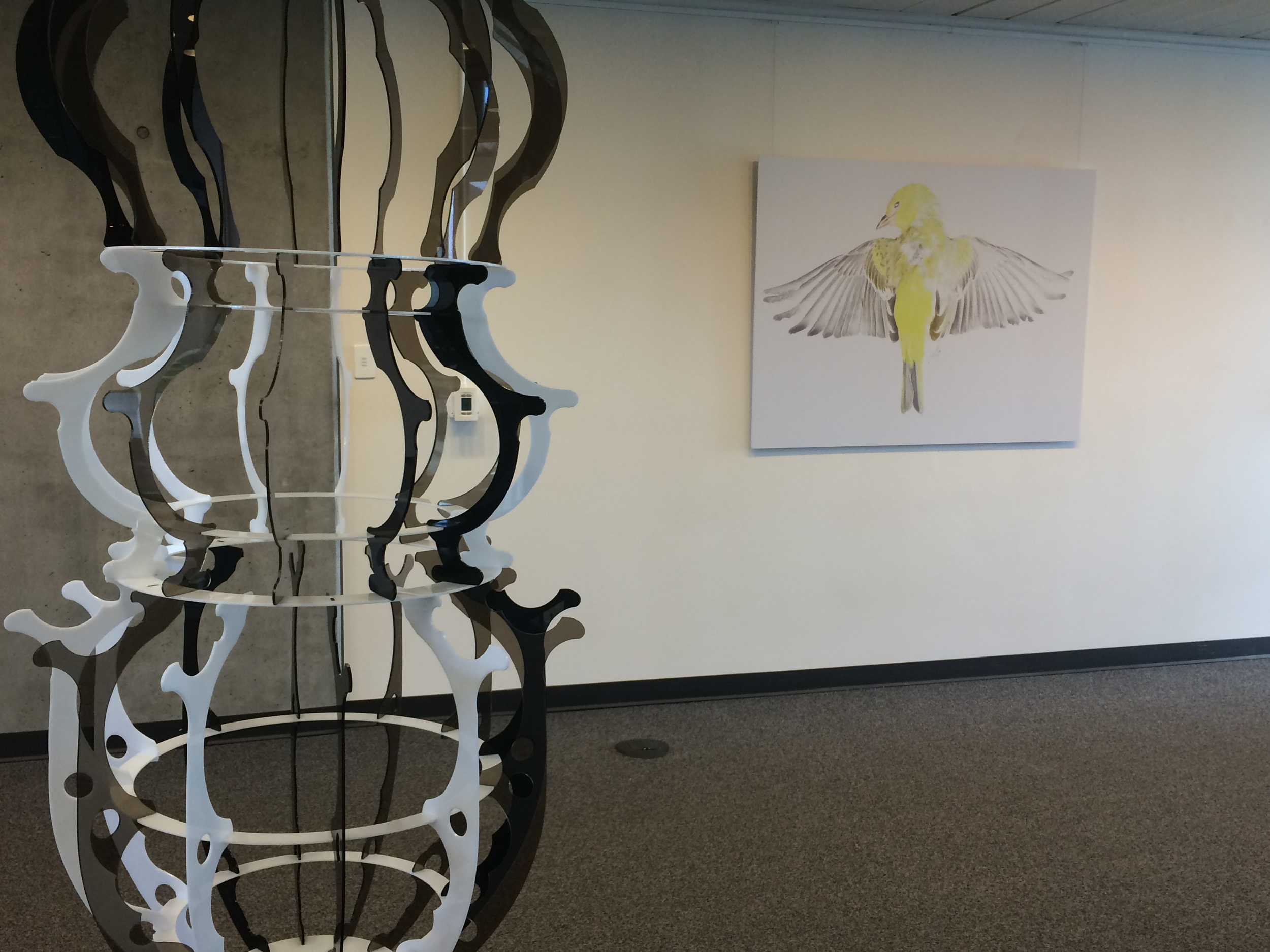 A collaboration between Matthew and Monica Furmanski.  Installed at CSU, Channel Islands  Curated by Irina D. Costache  2015
