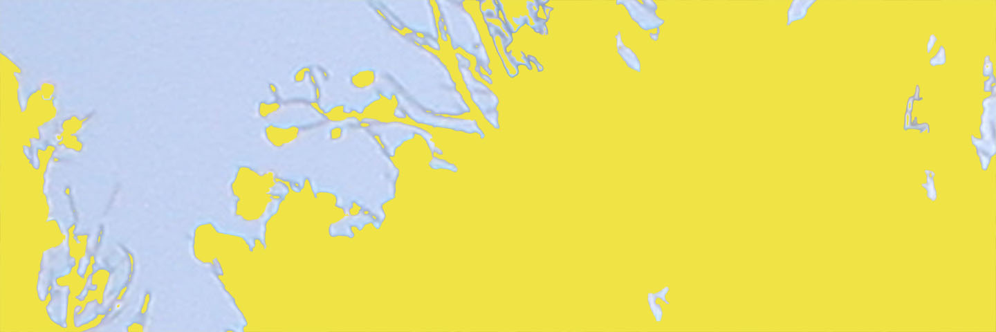 Forest for the Trees (yellow horizontal), 2007