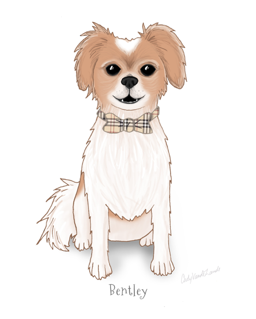 Commissioned illustration of Bentley