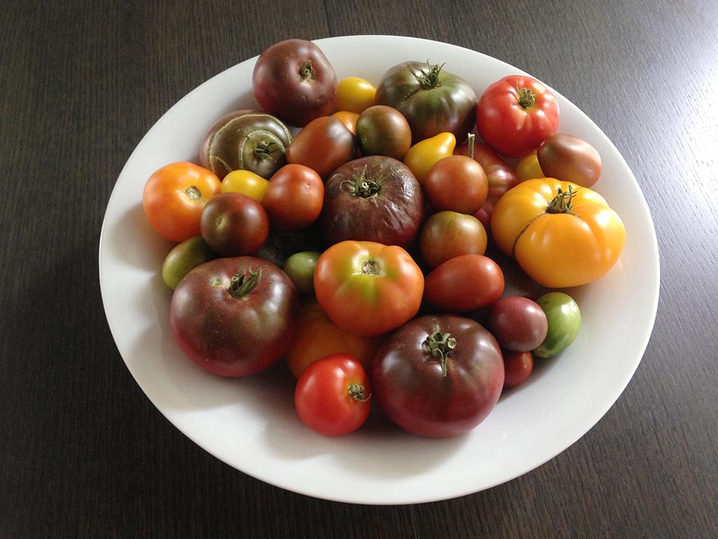 140417 tomatoes.jpg