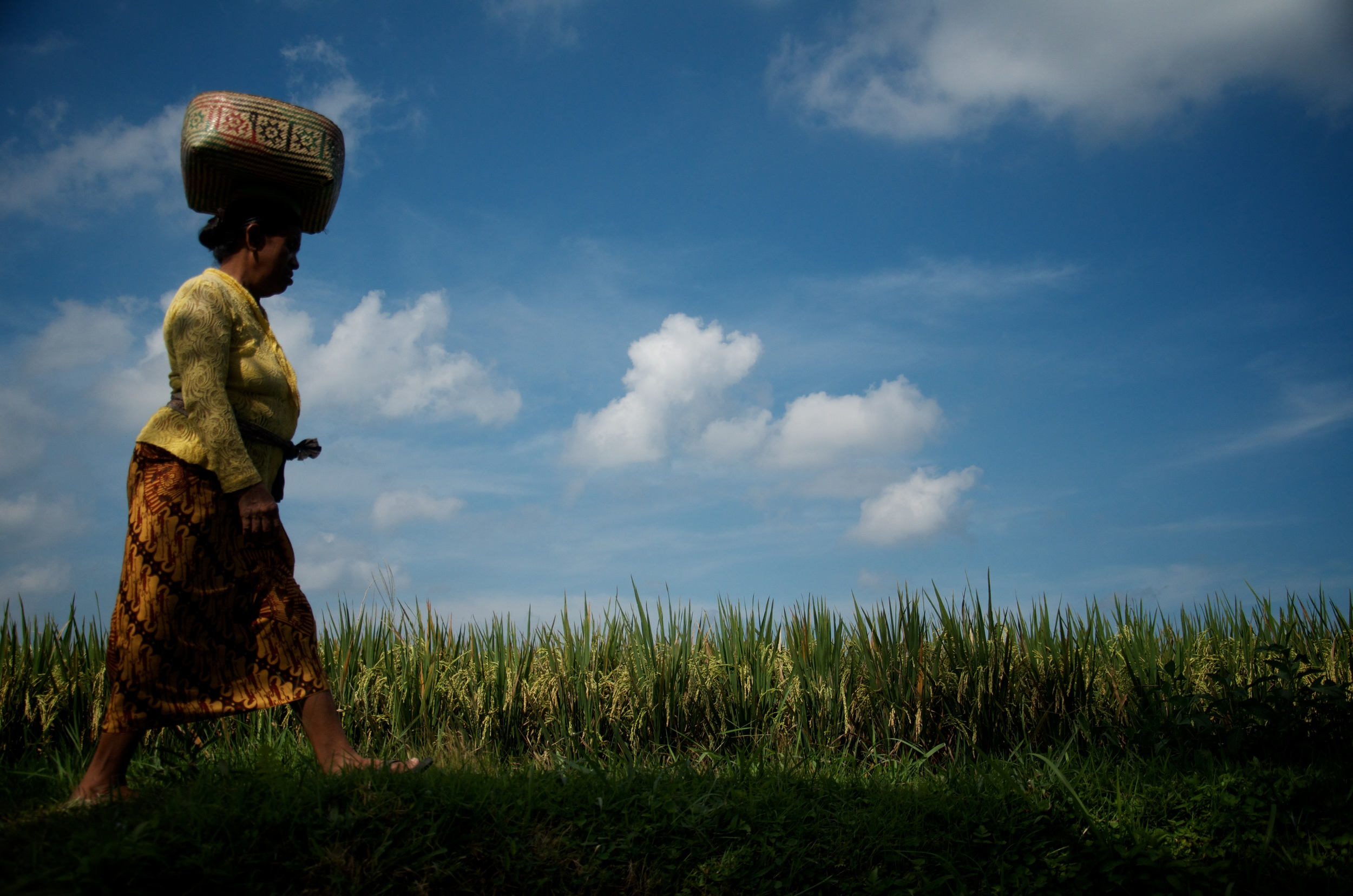 Indonesia 1.jpg