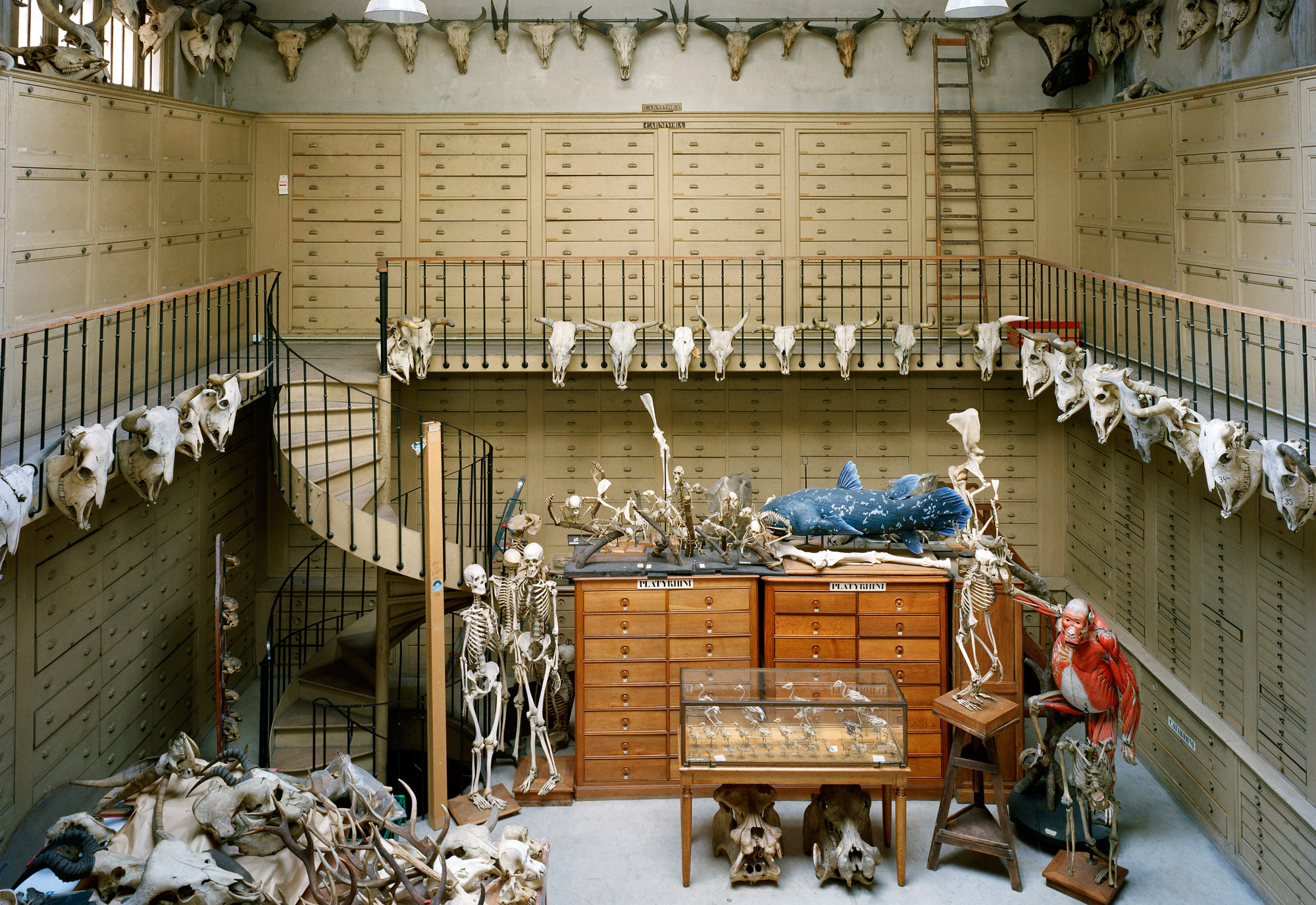 Collection_Room_MCA_Paris.jpg