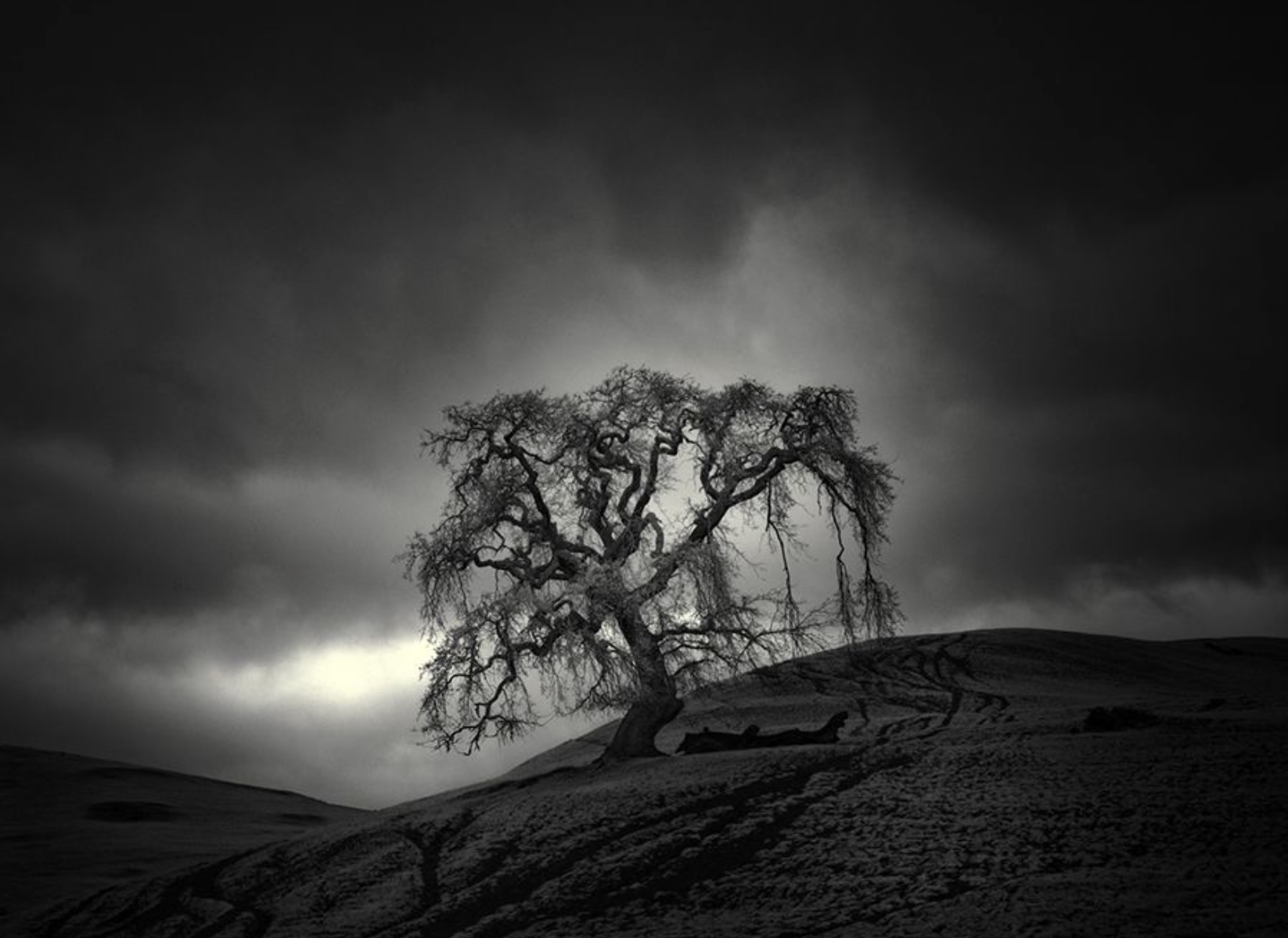 Photography by Nathan Wirth    Follow Nathan on  Facebook  -  Instagram