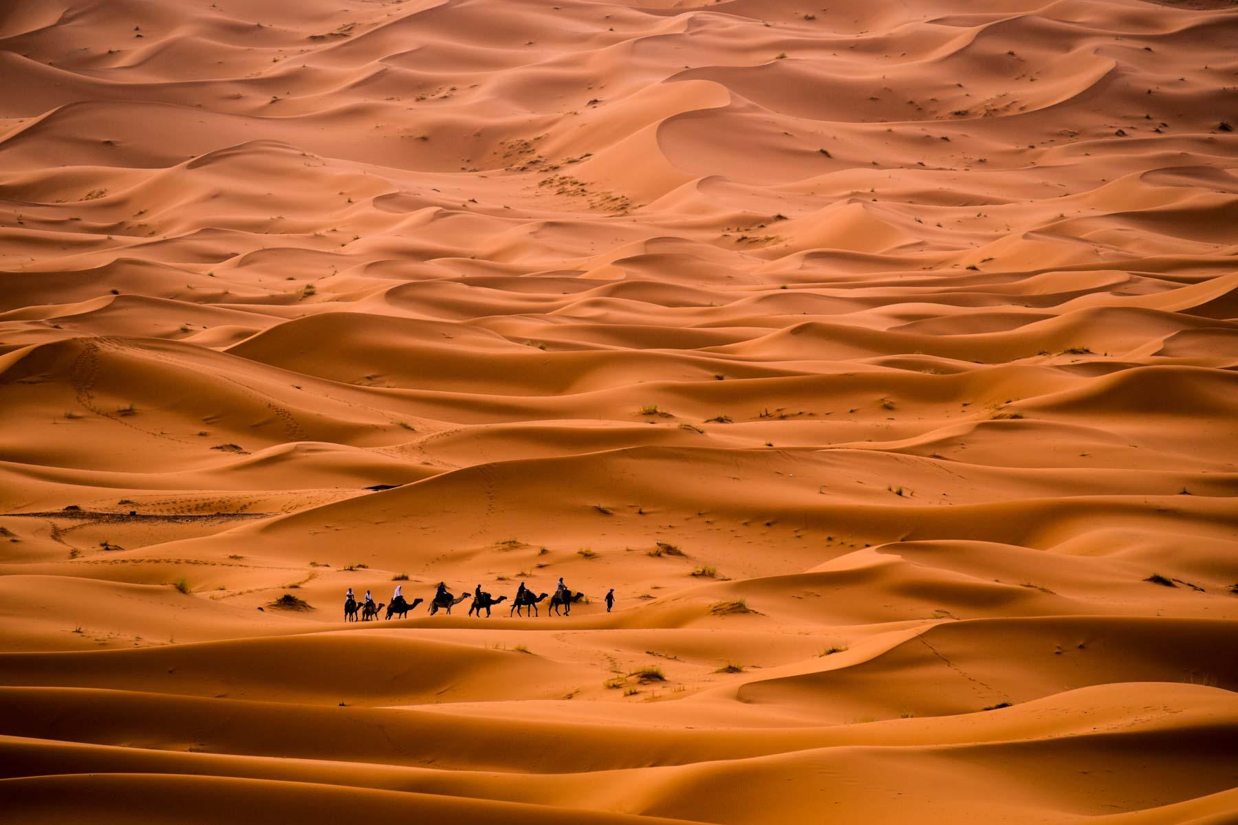 Erin Walker Anderson - Seas of Sand