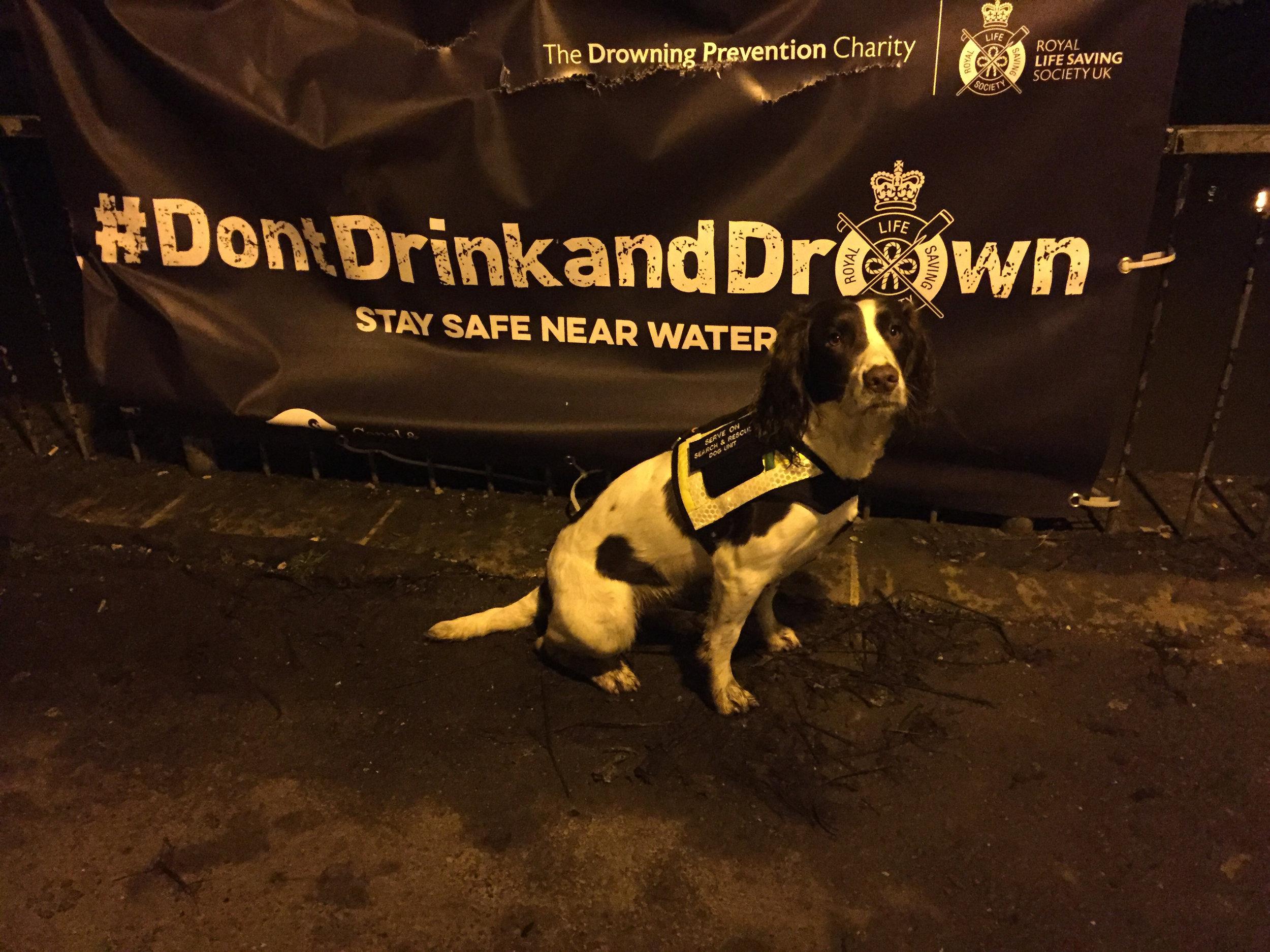 Dog handler James joined the river patrols with Molly, who proved popular with revellers.