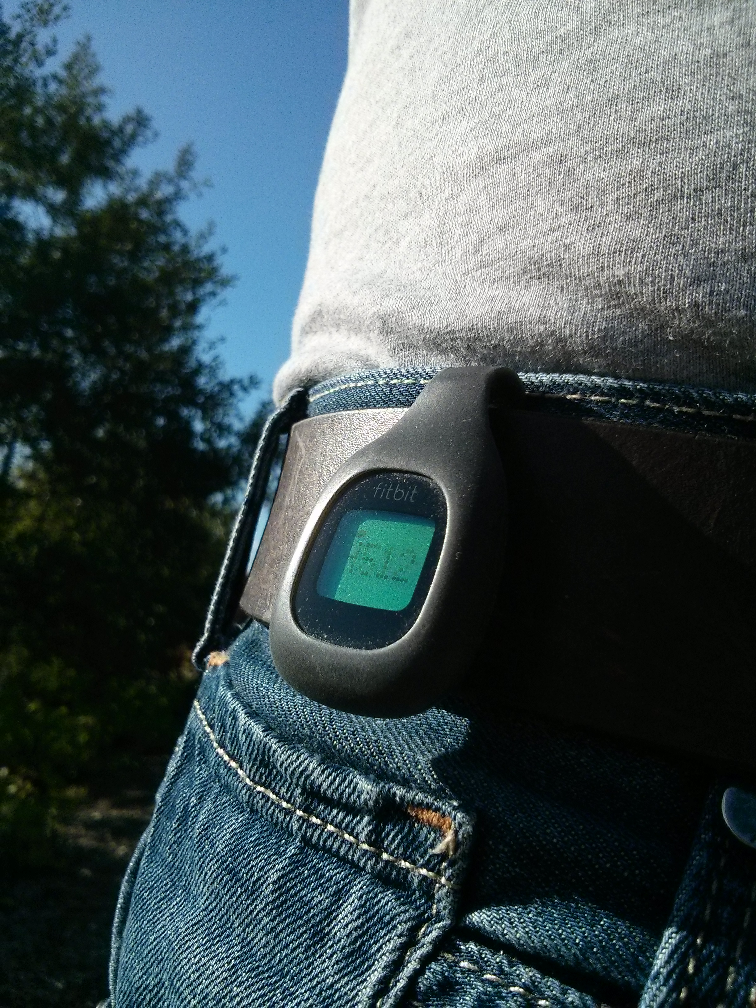 Can a simple pedometer make a big difference?