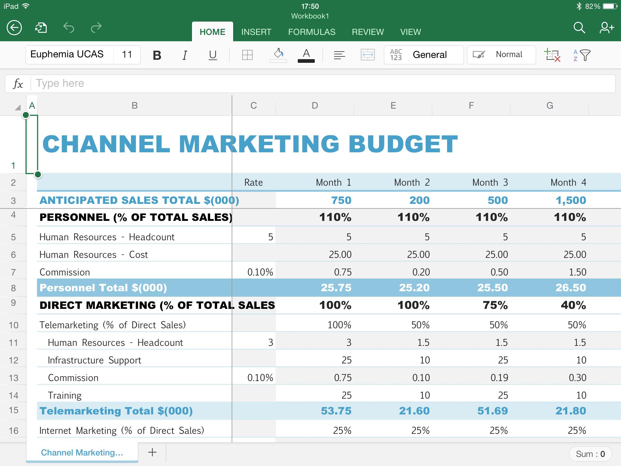 iPad Excel Worksheet