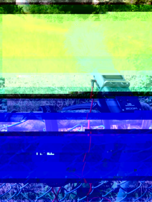 DhwsbY9UcAEmehn-glitched-7-12-2018-3-14-04-PM.png