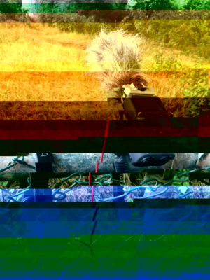 DhwsbY9UcAEmehn-glitched-7-12-2018-2-00-12-PM.png