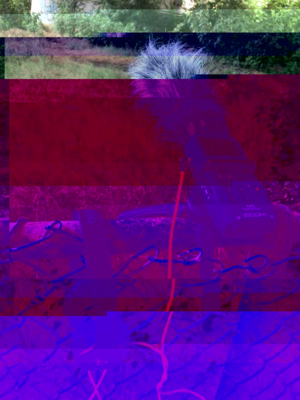 DhwsbY9UcAEmehn-glitched-7-12-2018-1-38-35-PM.png
