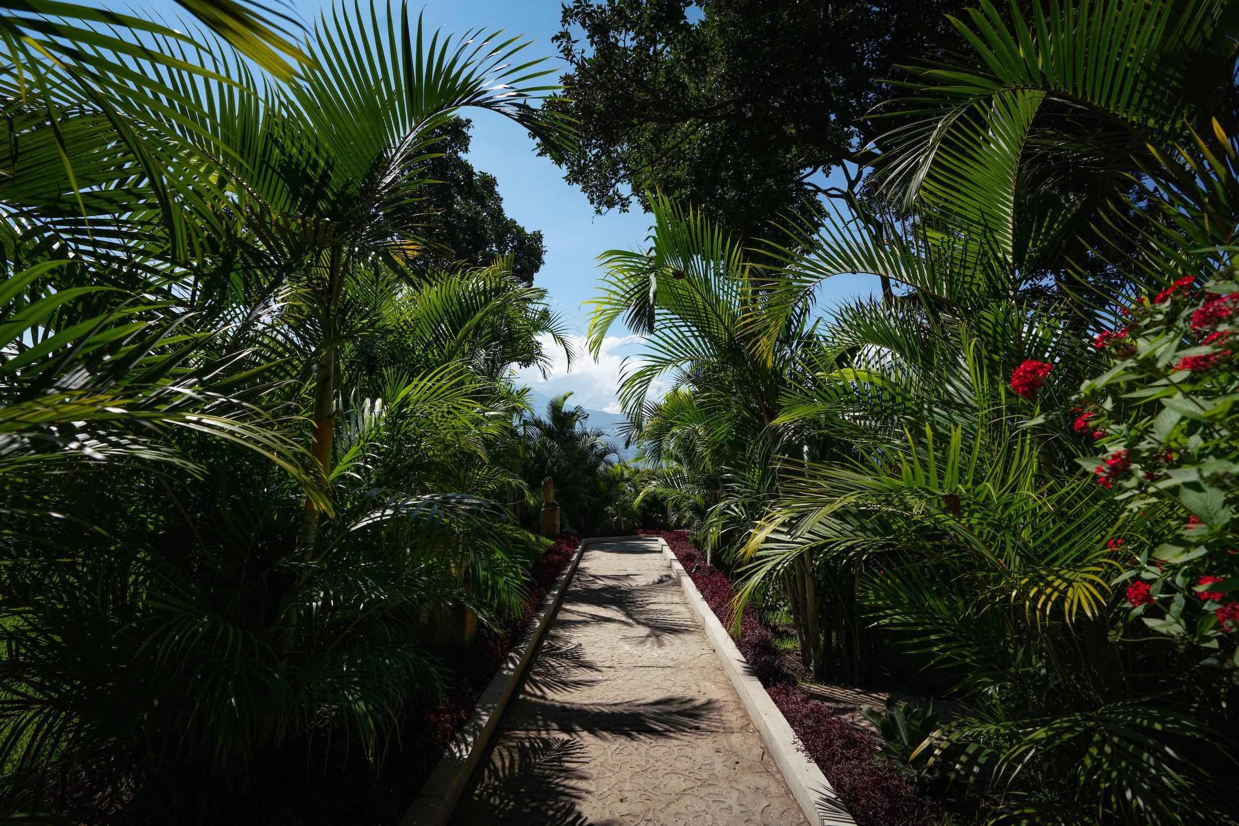 casaprana-facilities-garden-7.jpeg