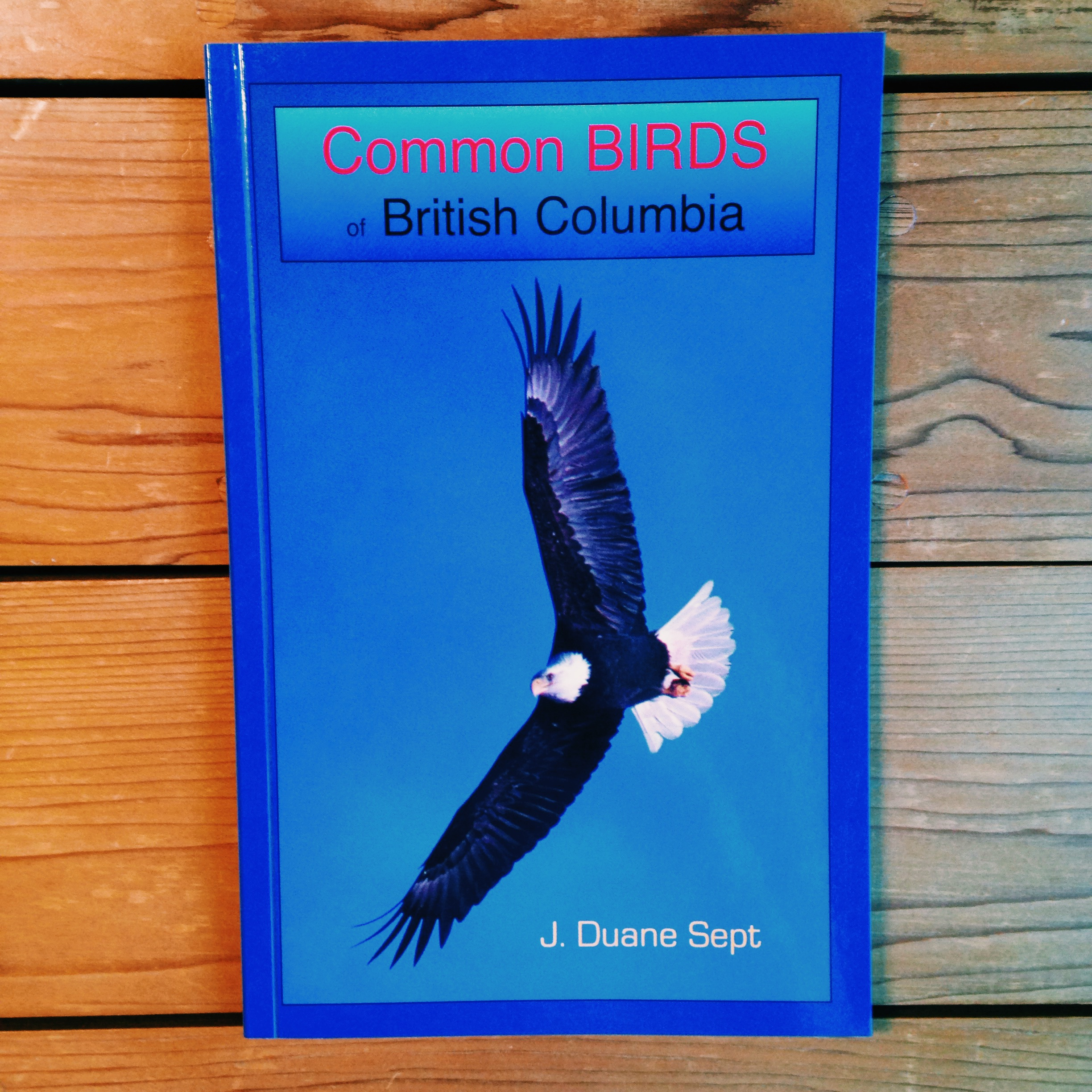 Common Birds of British Columbia