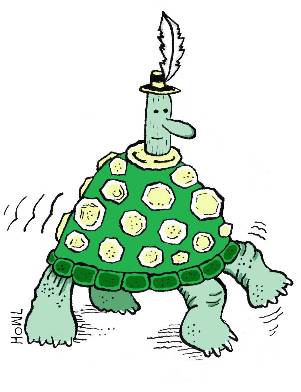 turtle-chap-final2.jpg