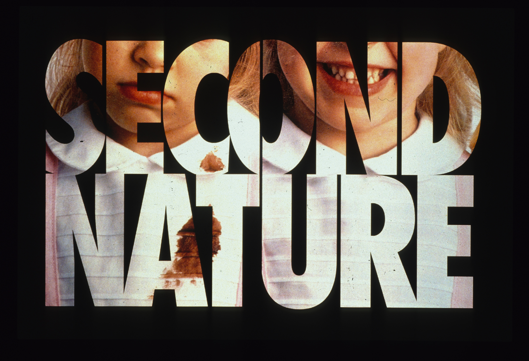 "Mitchell Syrop, ""Second Nature"",  Projections: intermission images"