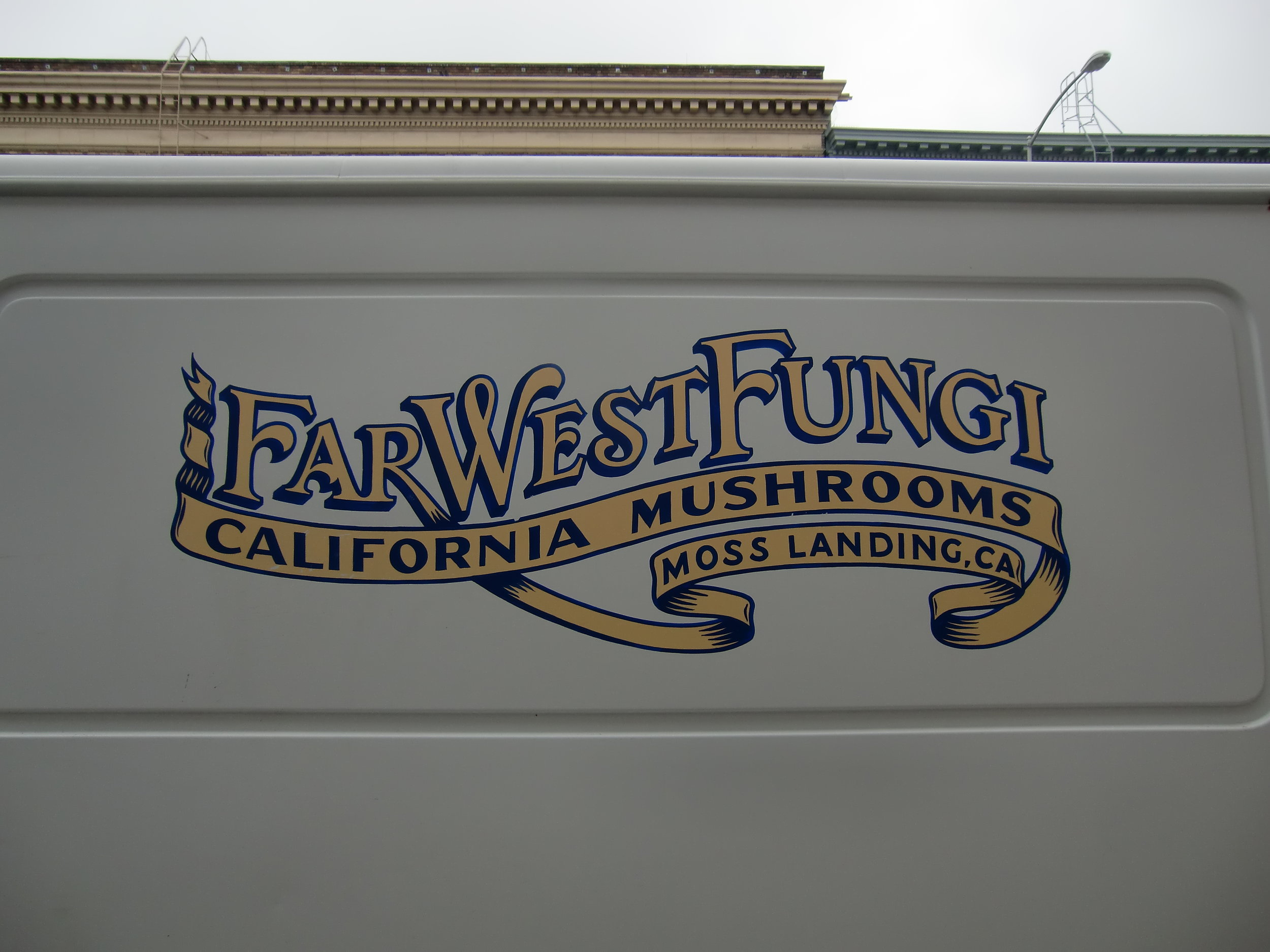 HAND-far-west-fungi-logo-on-van_5958864433_o.jpg