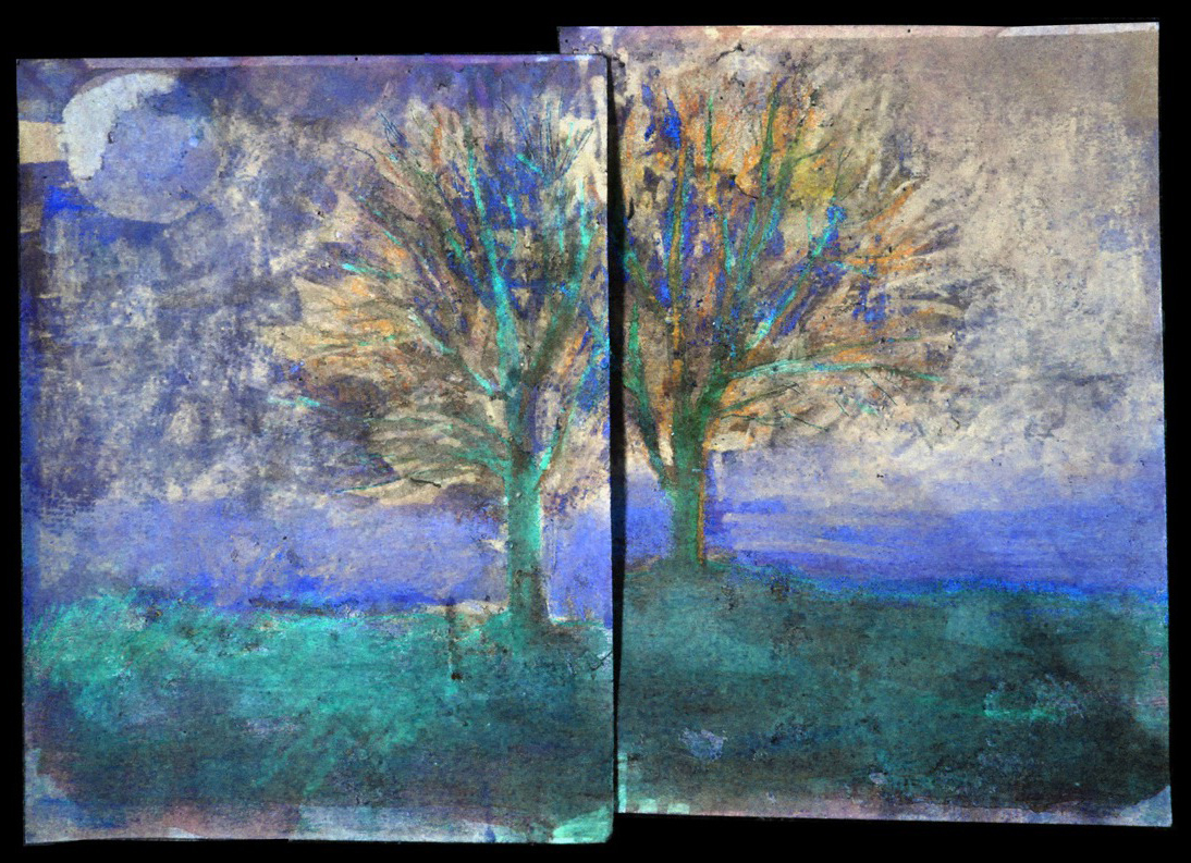 """Day One Day Two / 2014/24""""x36""""/Mixed media / Collection of P ennsylvania Horticultural Society"""