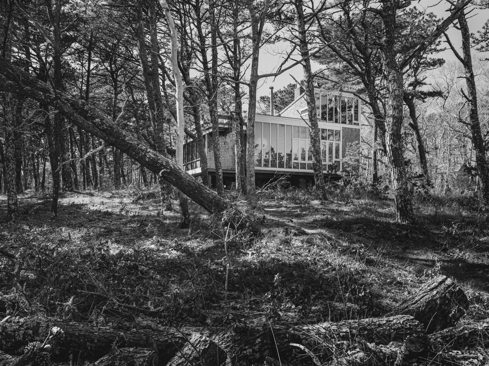 The Halprin House