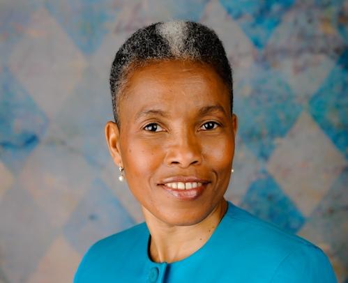 Diana Harrison, Jalawelo Diaspora Volunteer