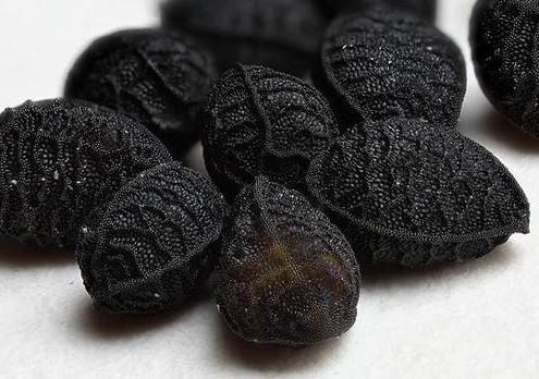 For all 101 Black Seed Oil Benefits visit link below.