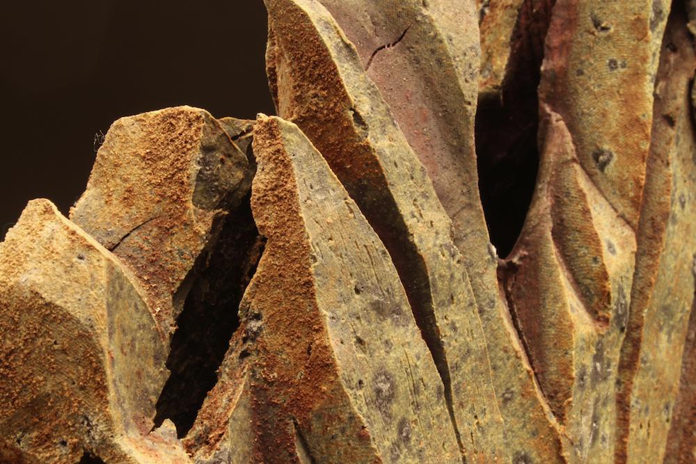 Vase (detail)