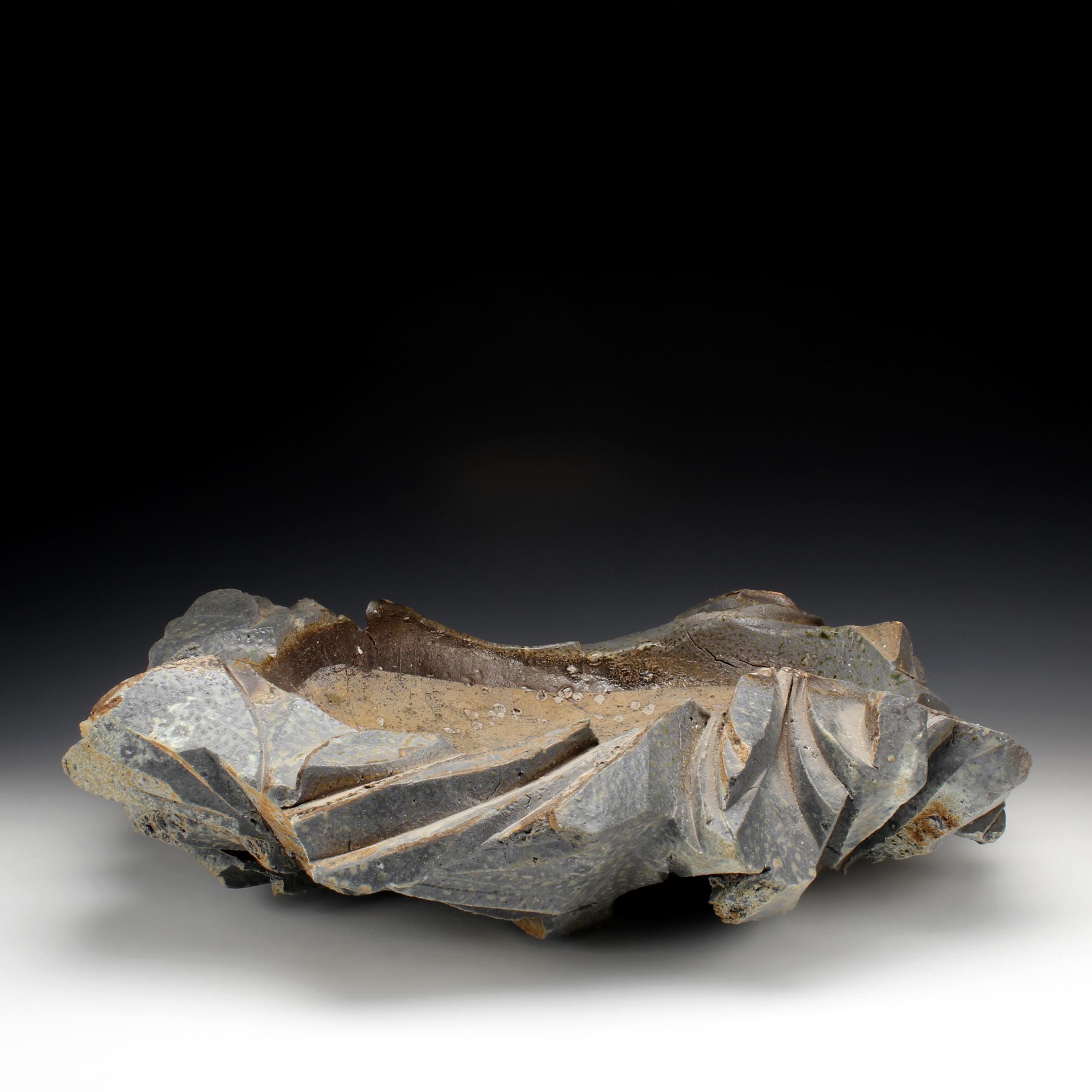 """Platter  6"""" x 21"""" x 20  Wood fired stoneware, quartz  2014"""