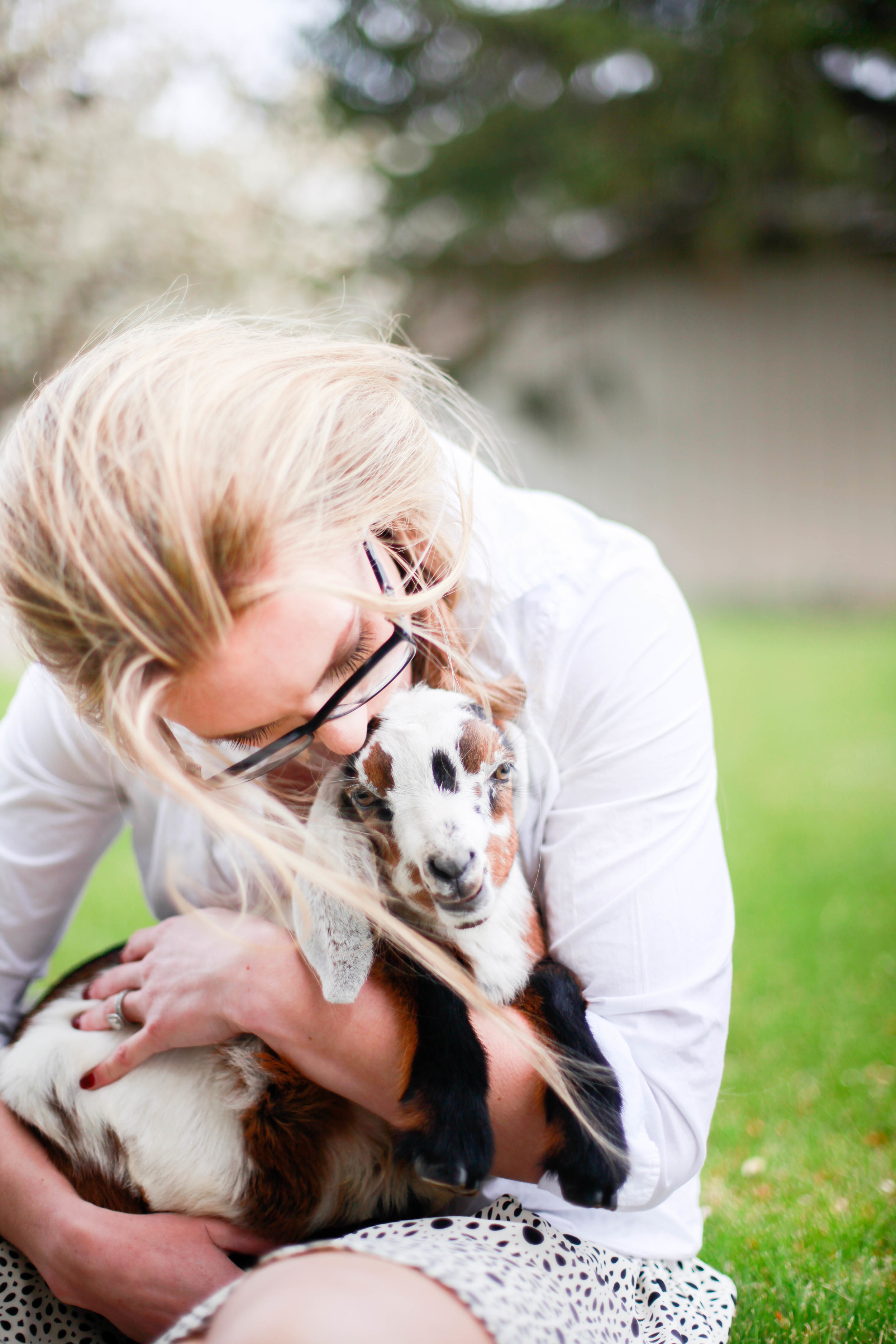 Baby nubian goats from boxwoodavenue.com [Rachel L'Antigua Photography]