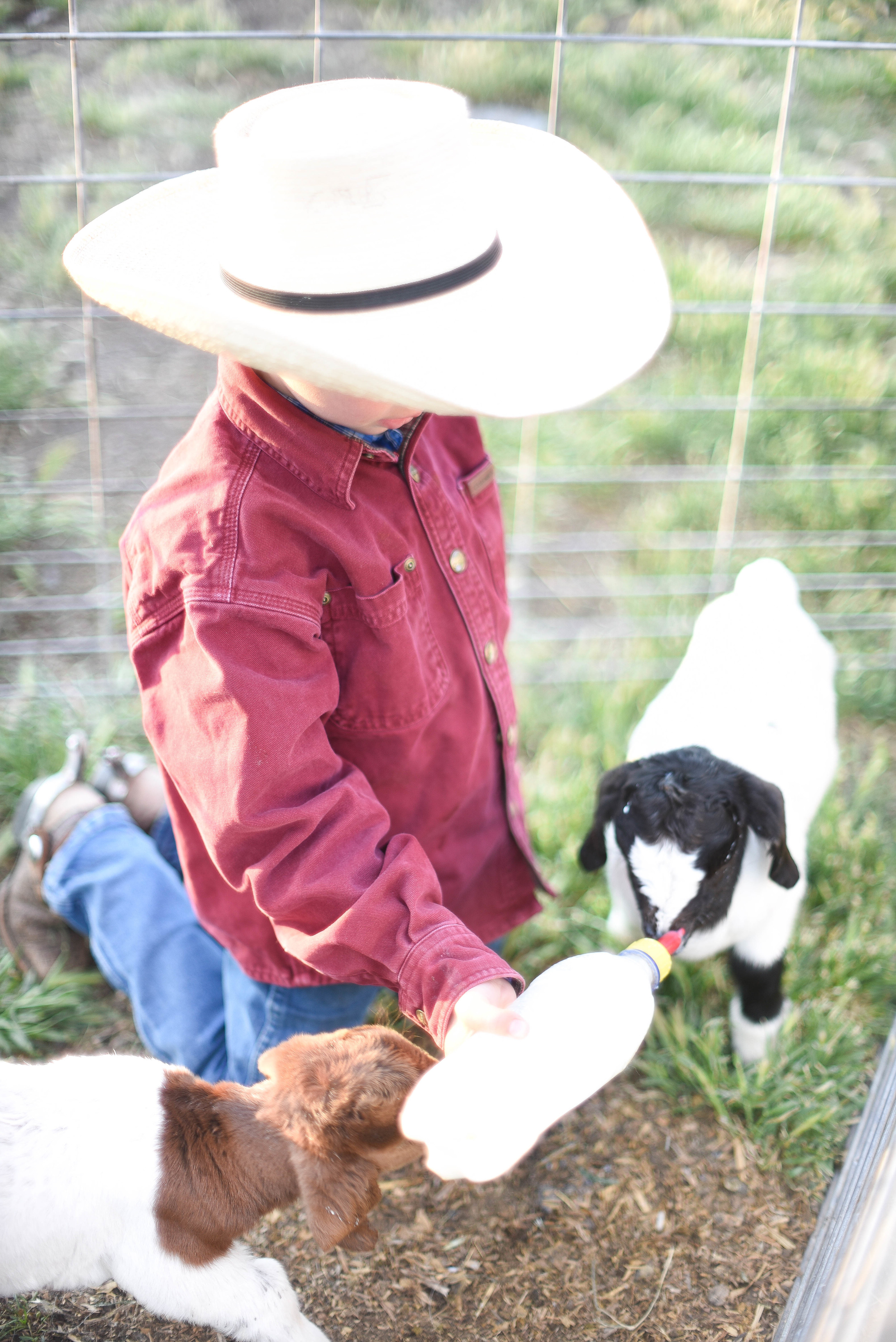 This little cowboy takes his jobs  very  seriously.