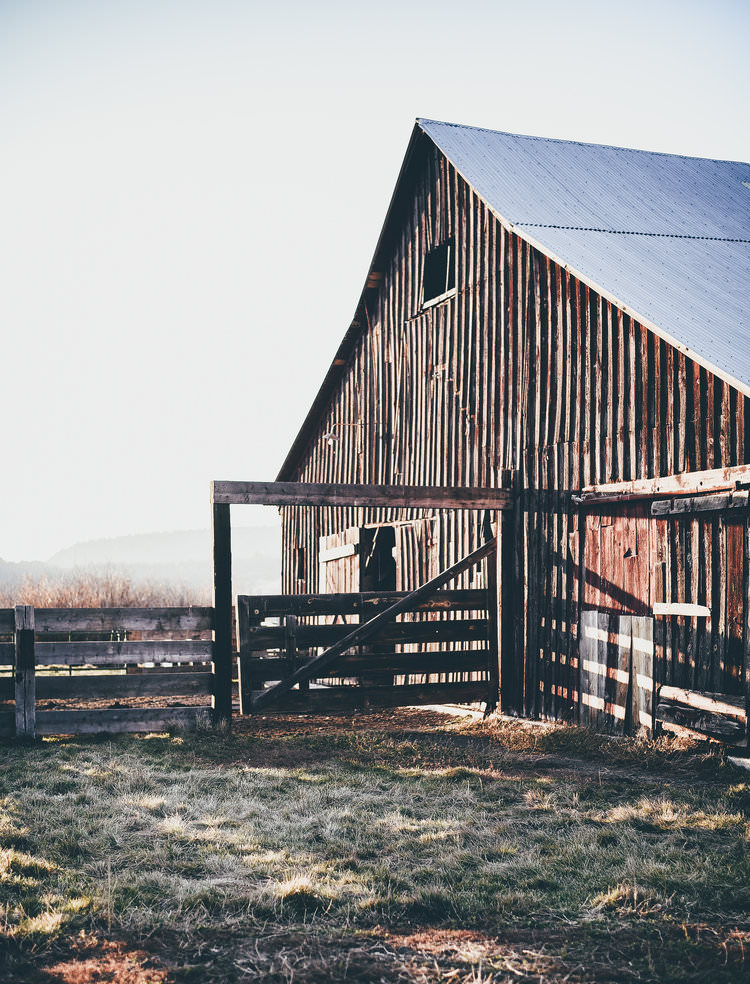 Old Red Barn Cattle Ranch | boxwoodavenue.com