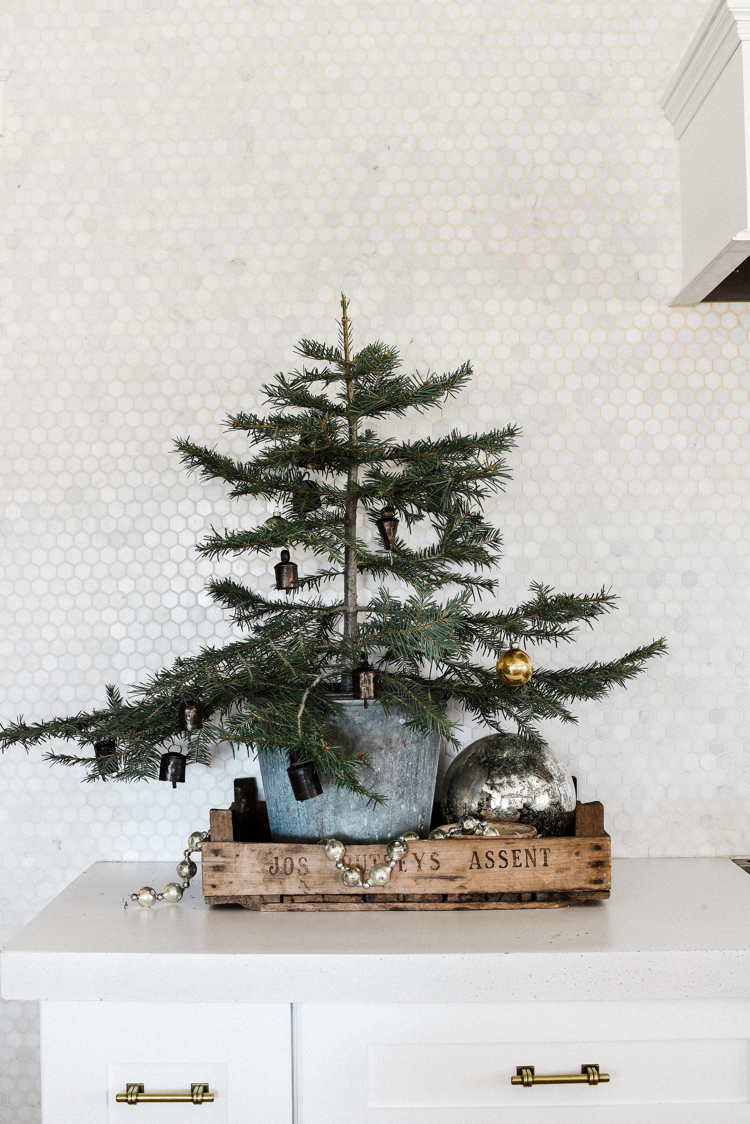 Tiny Scandinavian Christmas tree decorating idea in a zinc bucket for a minimalistic Christmas   boxwoodavenue.com #christmastreedecor #ScandinavianChristmasTree