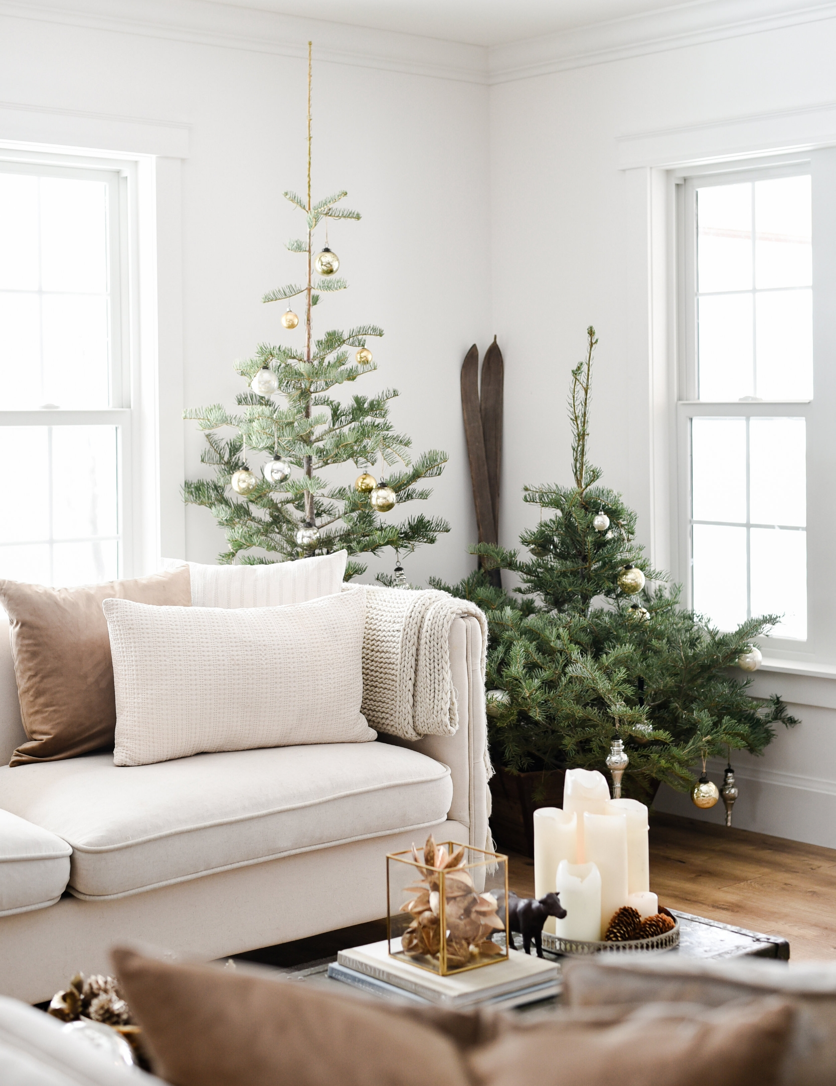 last year's christmas trees - FEATURED IN BETTER HOMES & GARDENS