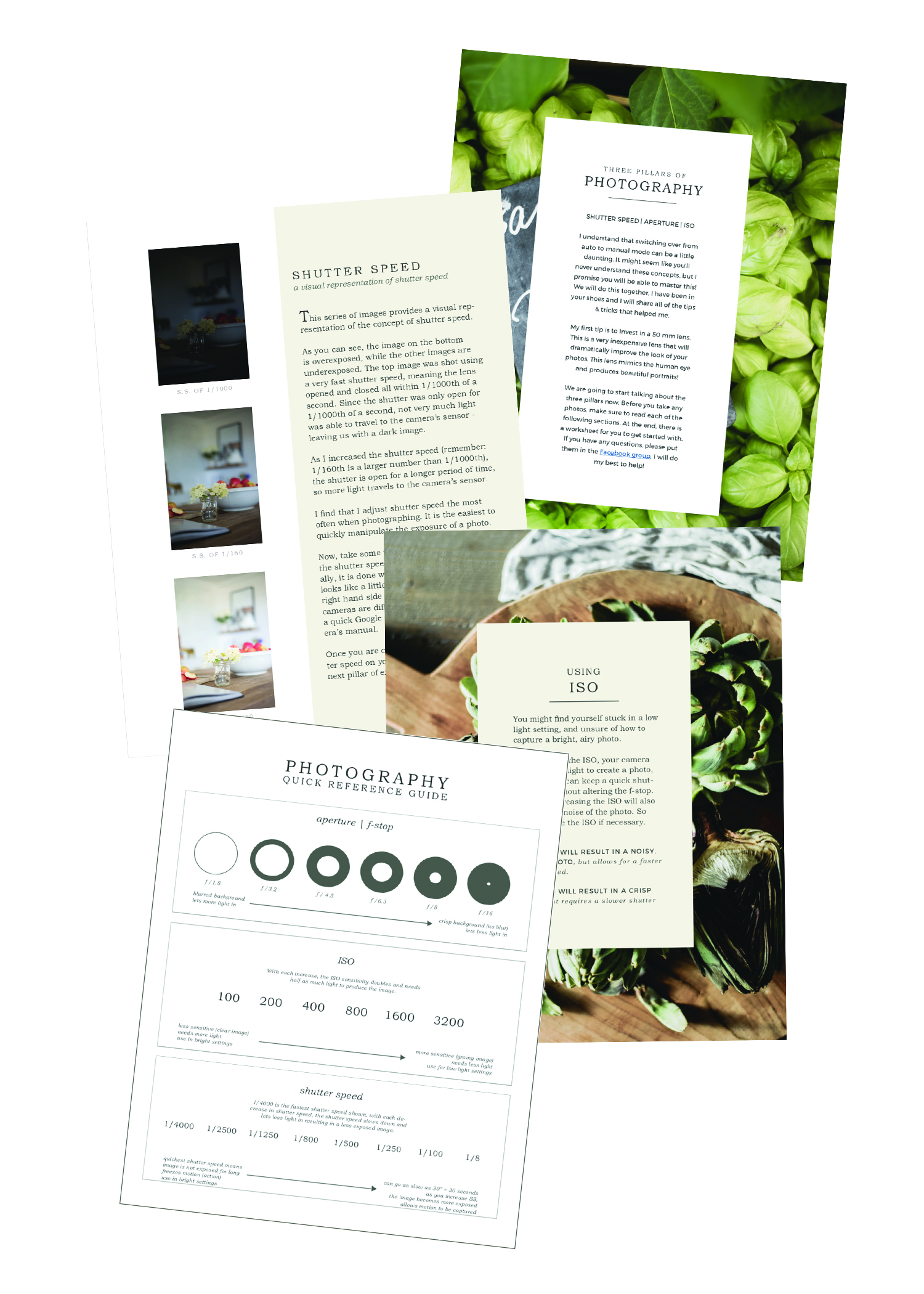 Photography basics e-book outline | boxwoodavenue.com