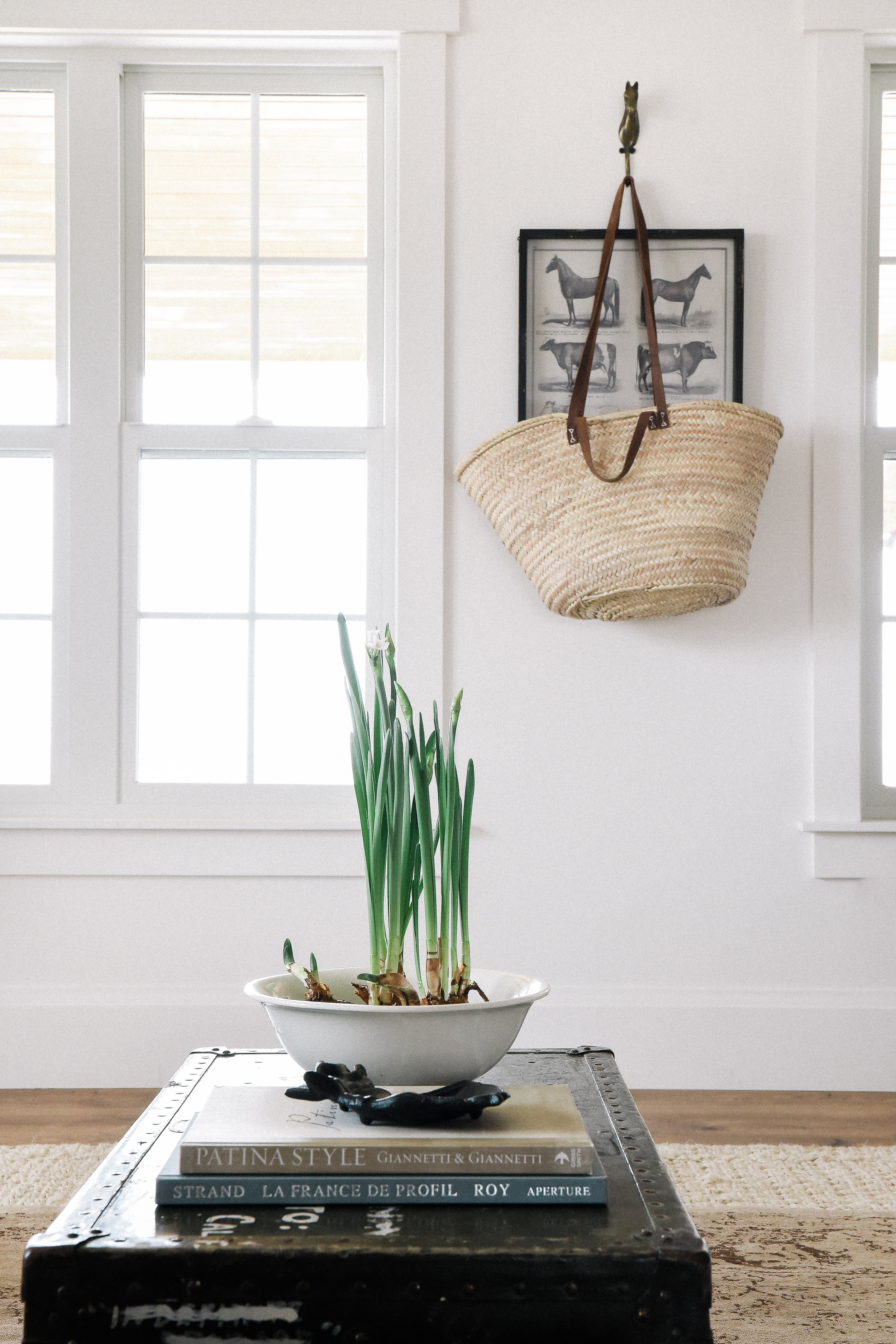 Beautiful farmhouse living room for spring with forced paper white bulbs indoors  - learn how to force bulbs! #springdecor #forcingbulbs