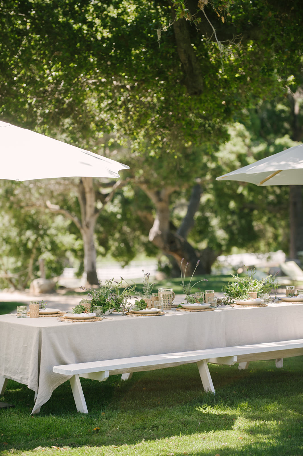 Outdoor dining tablescape ideas for summertime with pops of green, lavender, and linen!