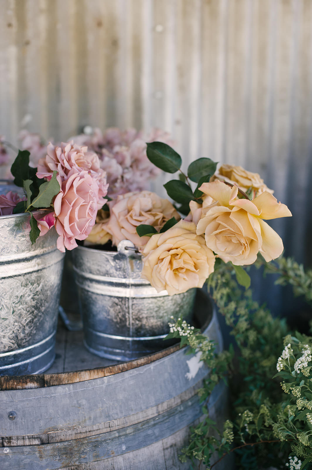 Garden roses in bucket at farmstead | Floral arranging class with Sarah Winward at Folded Hills Ranch for Pacific Natural with Jenni Kayne!