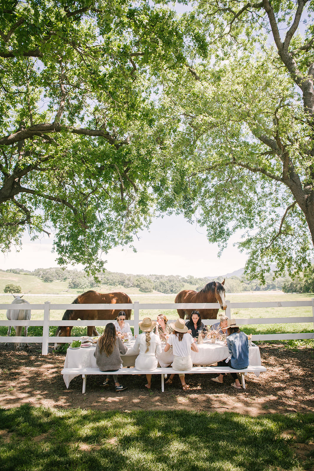 Outdoor dining at farmhouse with horses at Folded Hills for Jenni Kayne