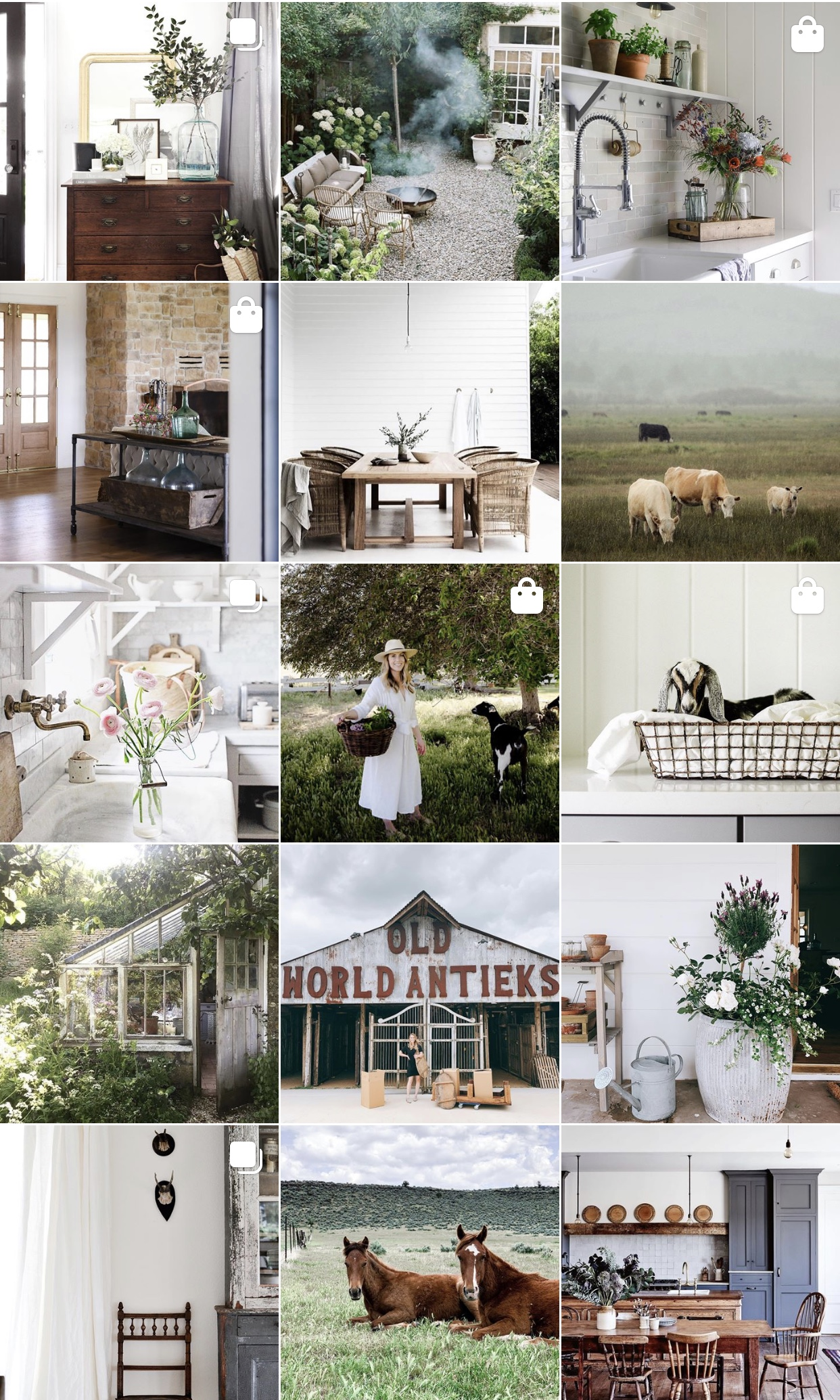 Cohesive Instagram photos to get more followers on Instagram |  @boxwoodavenue