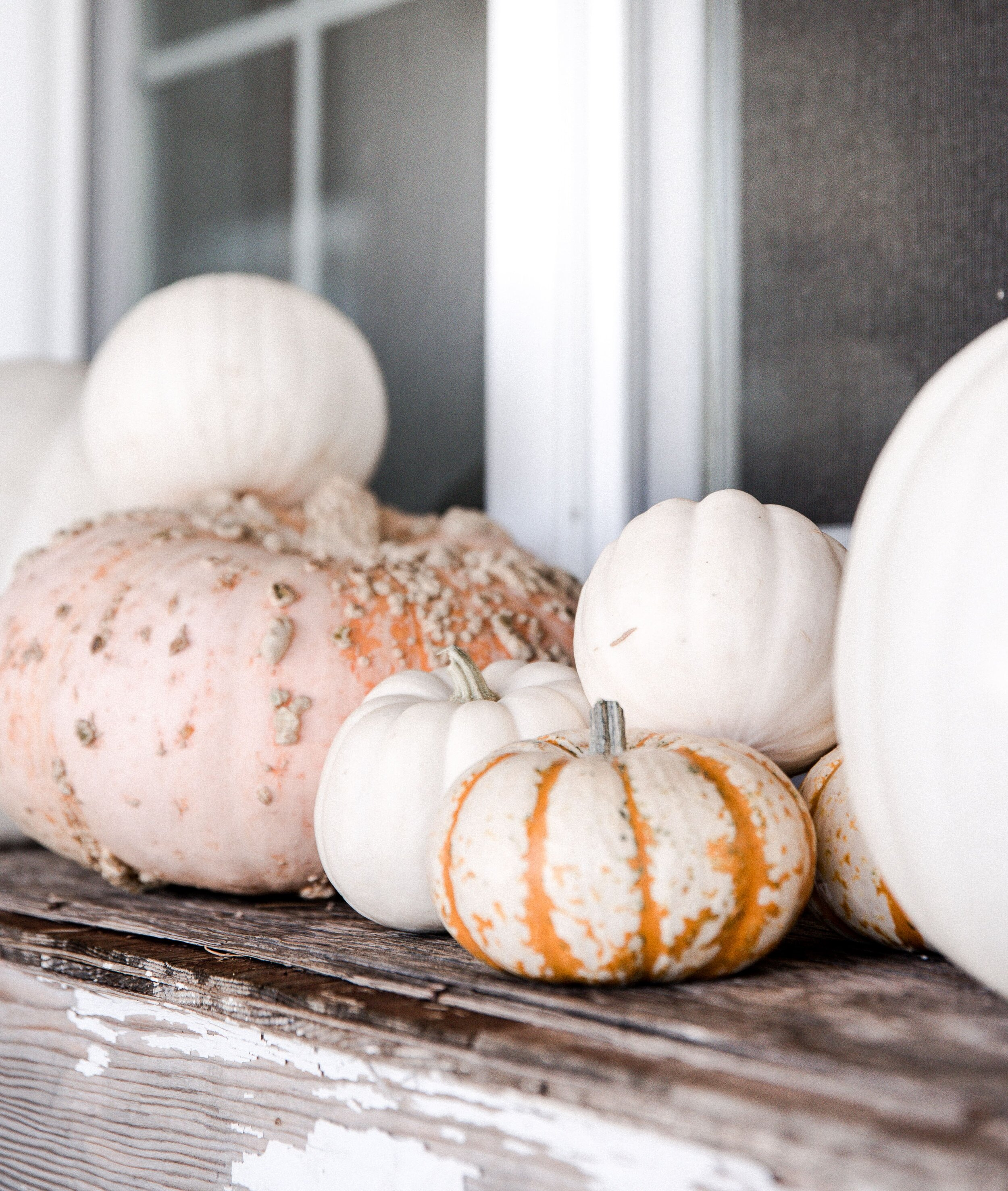Fall porch decor: pumpkins! Use white and unique pumpkins. #pumpkins #fallporch #farmhouse