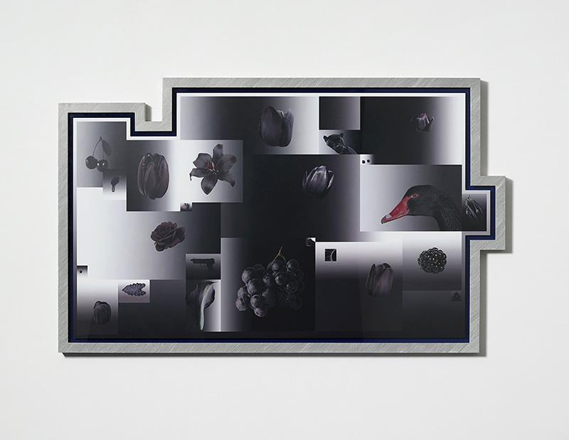 刘诗园作品,Leo Xu Projects, 2015