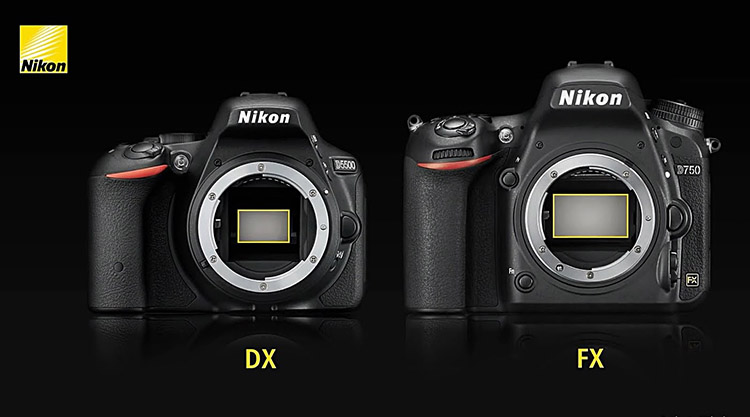 Here is a clear example of the difference between Nikon's DX and FX sensors. The FX is noticeably larger, which allows more light to flow onto the sensor when the shutter is released. The bigger FX sensor, like the one found on the D3s, enhances the camera's ability to perform in low-light conditions because less light is required to create the pixels that form an image. Combined with the higher end Nikon lenses such as the 24-70mm f/2.8, 85mm f/1.4 or any prime lens, the true power of the full-frame FX camera's sensor is unleashed. the low noise that the sensor is able to produce under high ISO settings is the reason I bought this camera. In my opinion ISO 1600 is the maximum usable amount before grain starts becoming too prevalent.