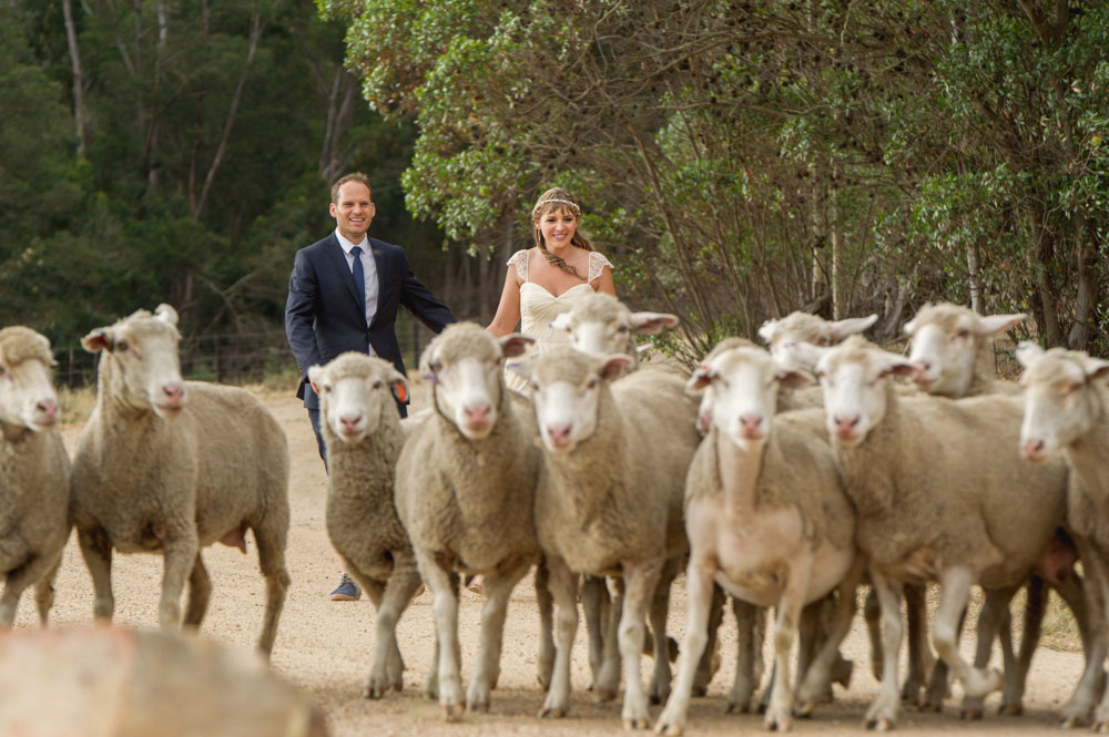 wedding-event-photographer-cape-town-jhb-john-henry-bartlett-destination-001.JPG