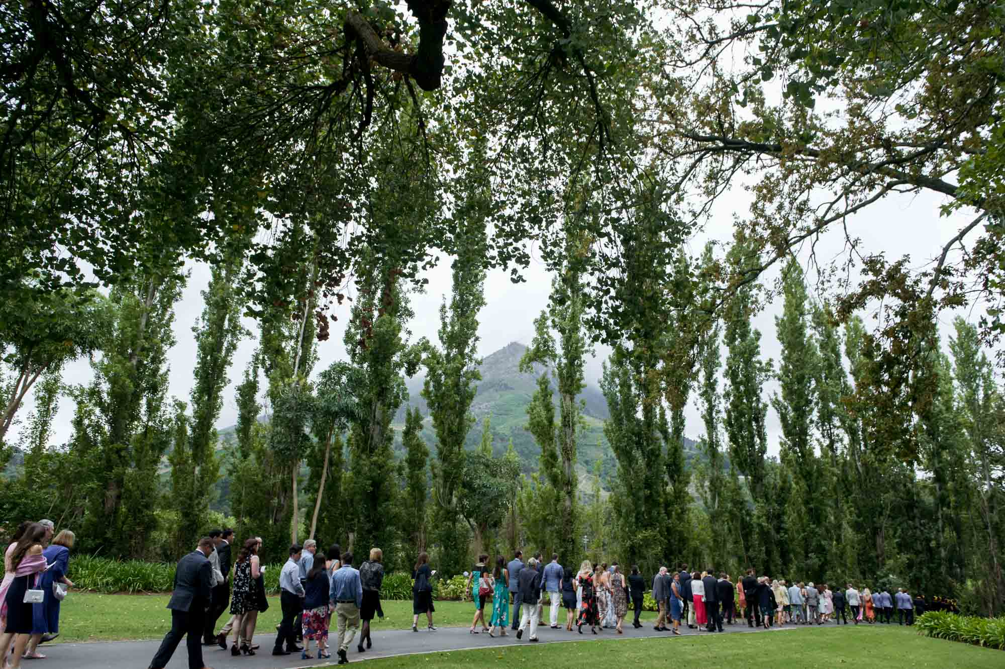 john-henry-cape-town-wedding-photographer-ceremony-001-11.jpg