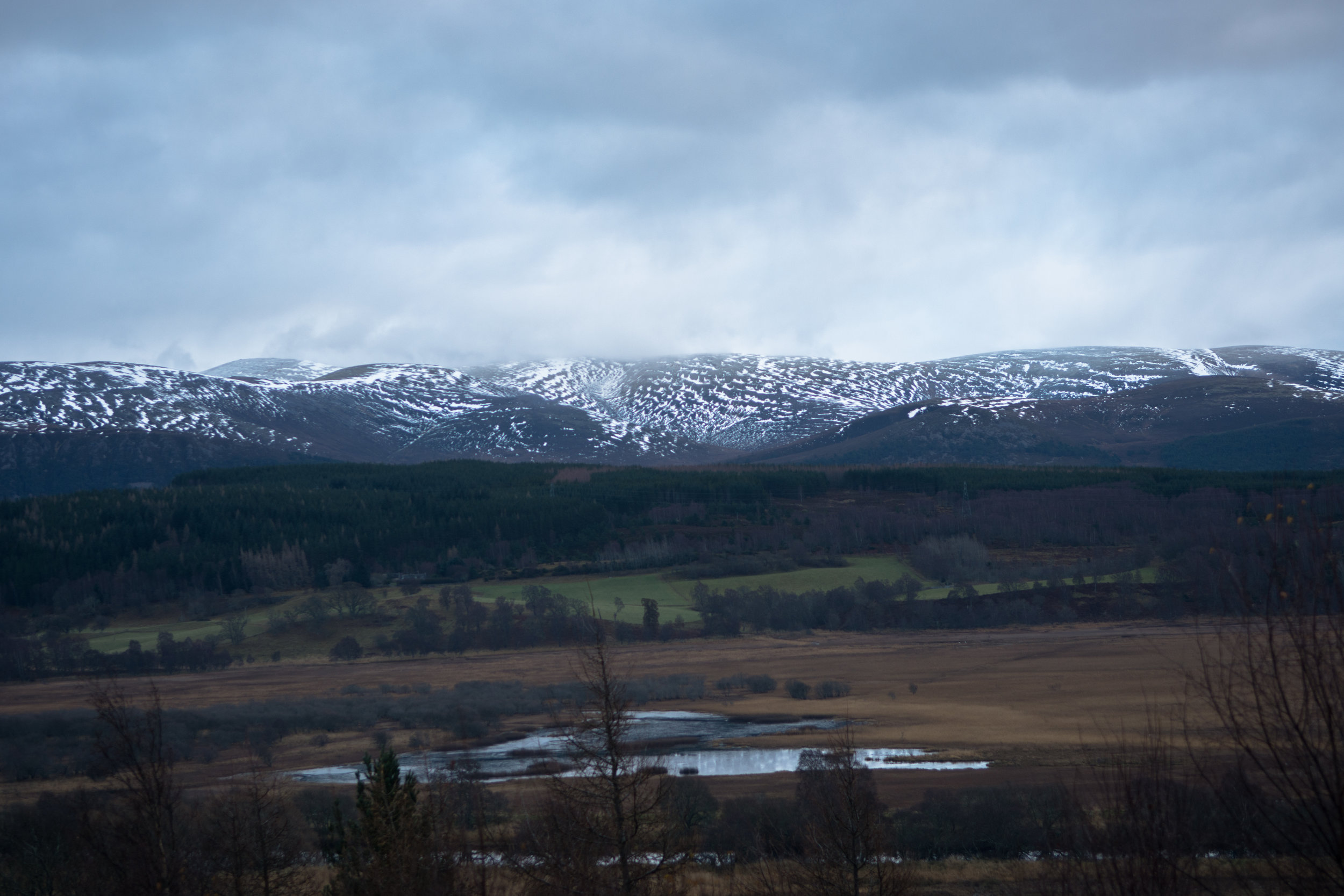 cairngorm view (1 of 1).jpg