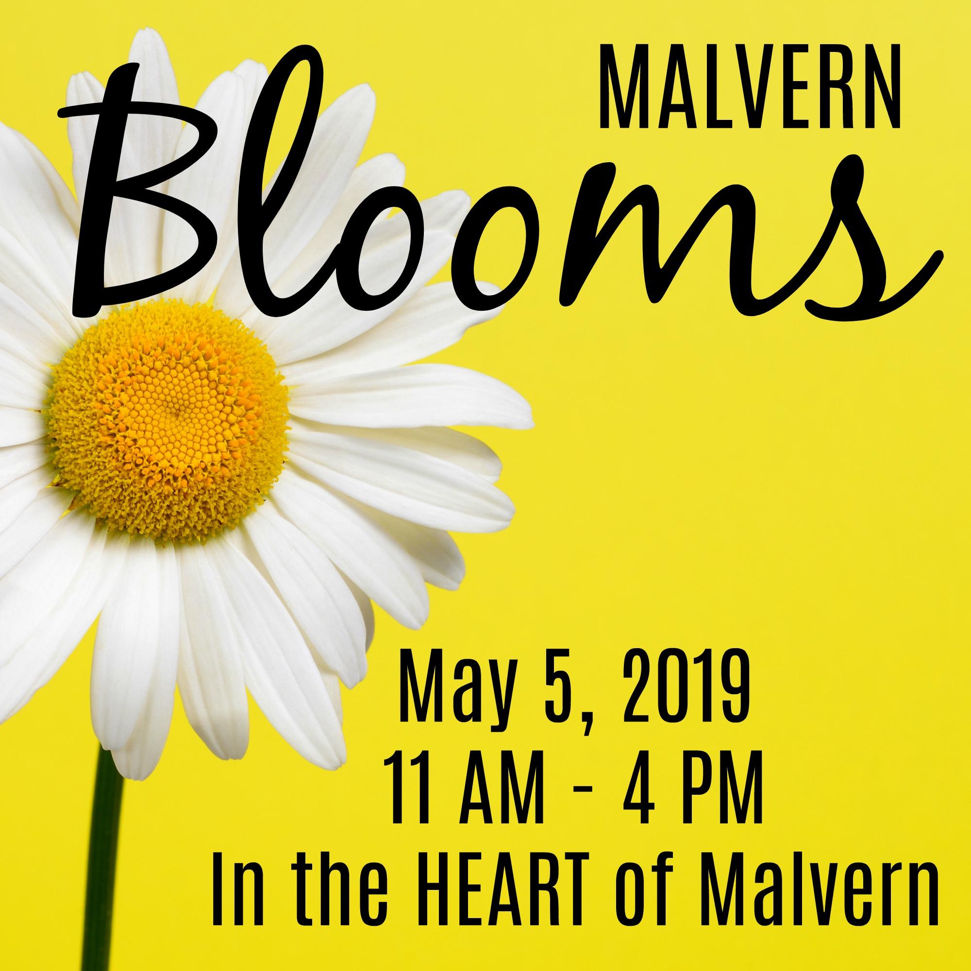 2019 Blooms.jpg