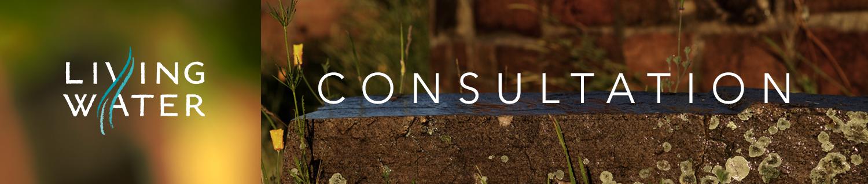 living_water_consultation.jpg