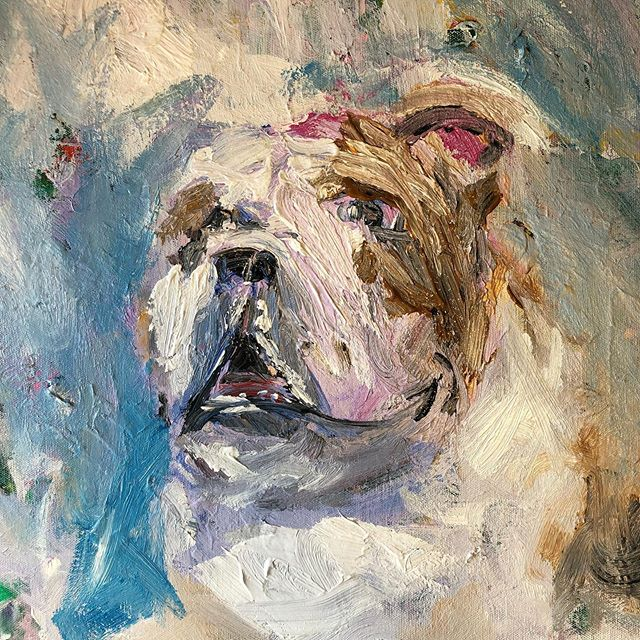 It's a Brody the Bulldog kinda day #legend . . #art #artoftheday #painting #paint #dog #pet #bulldog #colorful #staycolorful #conquercancer #hopegrowshere #rockport #capeann #boston #localart #painterwithoutborders