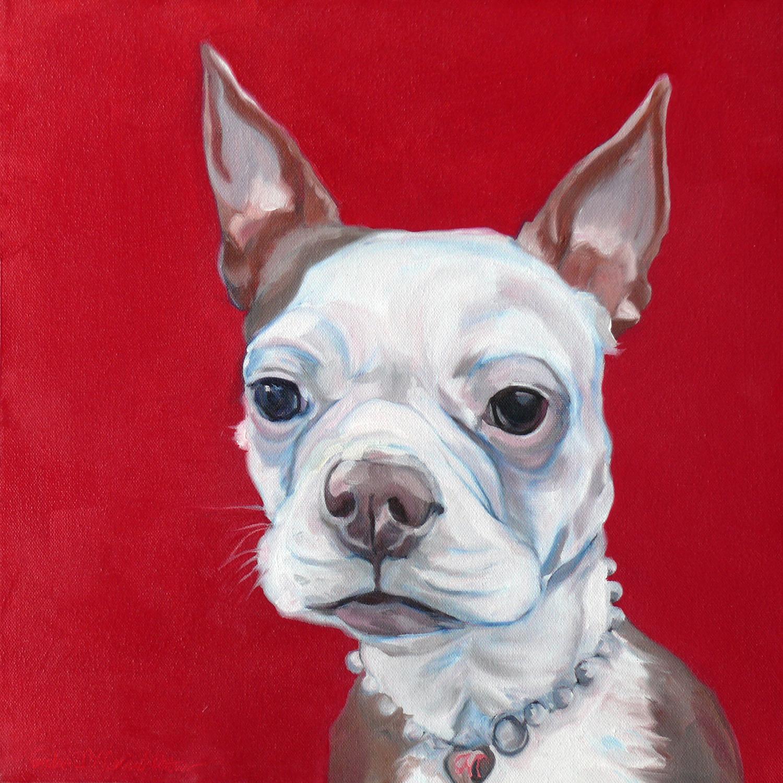 Boston Terrier Little Miss Missy