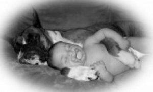 Bailey & Logan