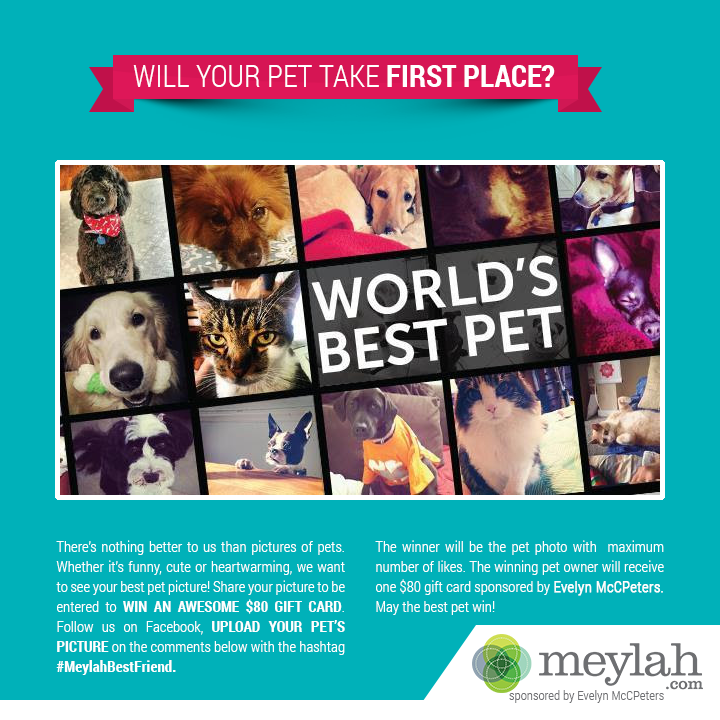 IS YOUR PET READY TO POSE FOR THEIR PHOTO OP?