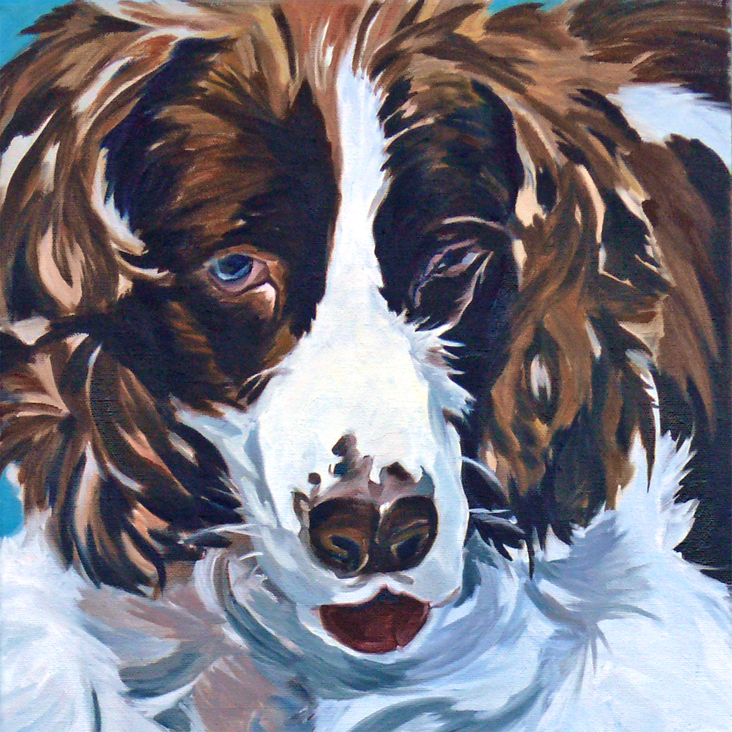 Sammie the Springer Spaniel